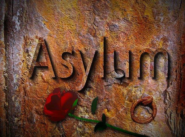 azyl a růže