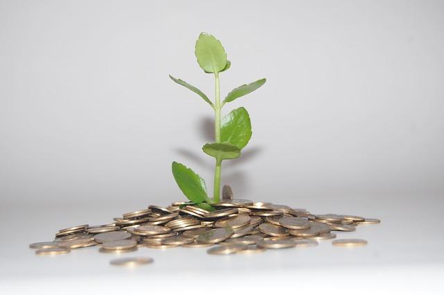 mince u rostlinky